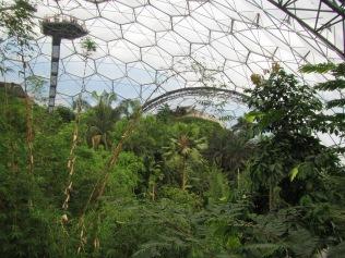 525 - Eden Project