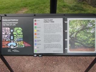 2318 - Walking around Helsinki(tree of life garden)