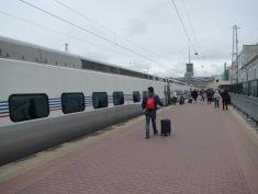 2393 - the train to Saint Petersburg