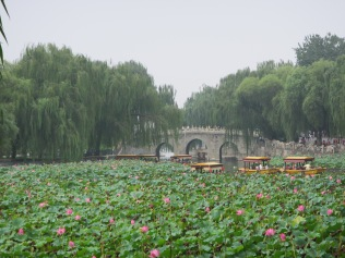 3287 - Walk the gardens west and north of the forbidden city