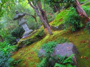 4559 - Kyoto (Tenryu-ji Temple)