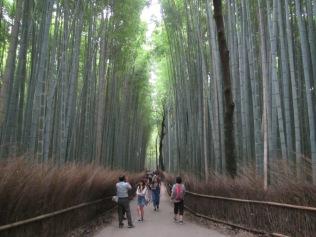4564 - Kyoto (Tenryu-ji Temple)