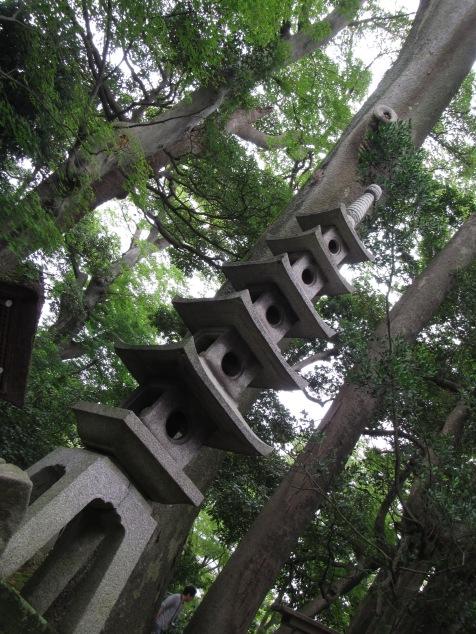 4957 - walking around Kanazawa(Kenroku-en)