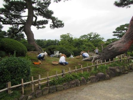 4963 - walking around Kanazawa(Kenroku-en)