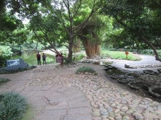 5682 - walking around Chengdu(water filter park)