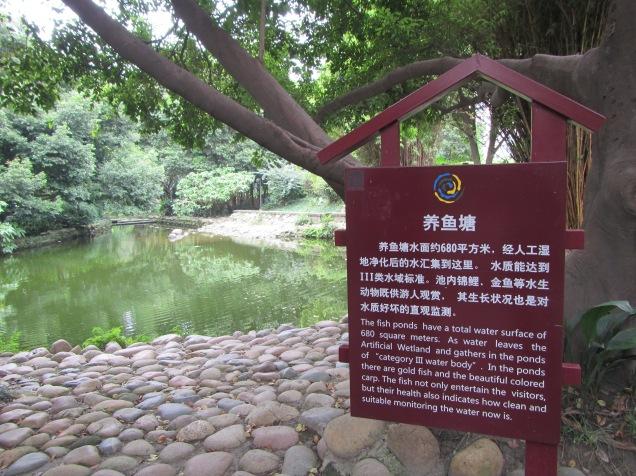 5685 - walking around Chengdu(water filter park)