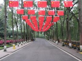6008 - panda reserve visit(flags)