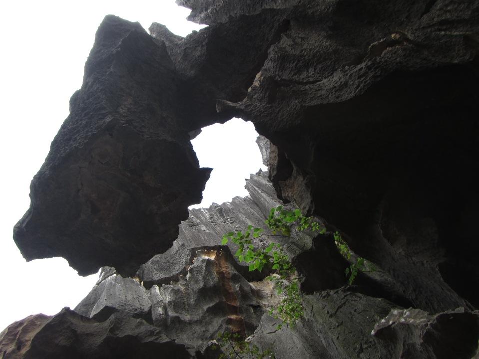 6393 - waking around the stone forest near Kunming