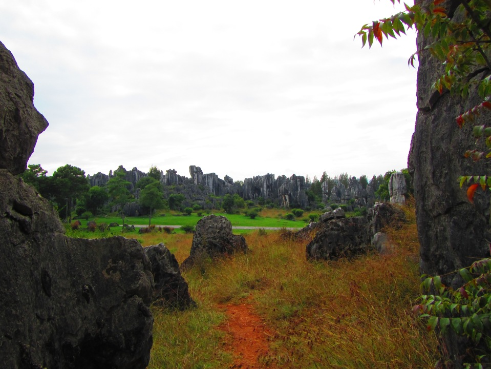 6442 - waking around the stone forest near Kunming