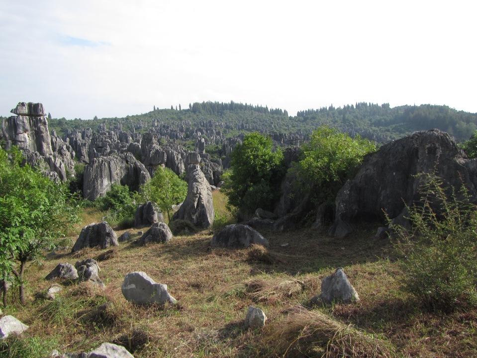 6453 - waking around the stone forest near Kunming