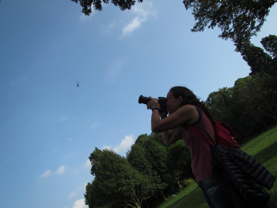 6464 - waking around the stone forest near Kunming