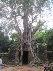 7124 - Exploring Siem Reap and Wats lots of wats day 3(Baphuon and more Wats)
