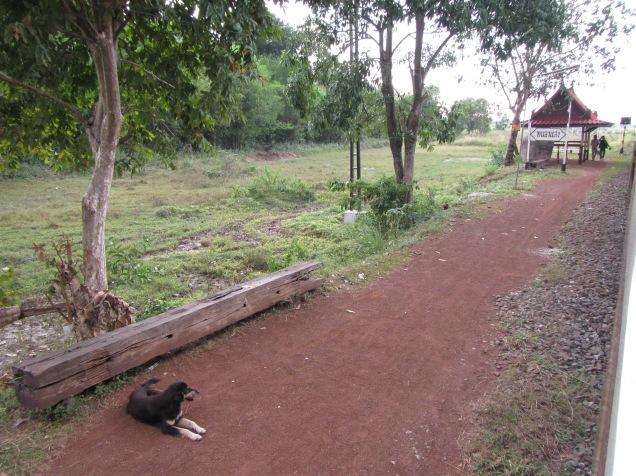 7244 - bus:tuk tuk:train ride from Siem Reap to Bangkok (what a trip)
