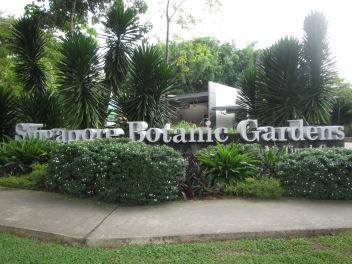 8105 - walking around Singapore (day 3)(the Batanic Gardens)