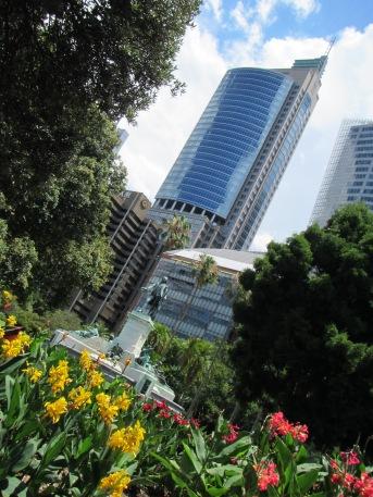 8456 - walking around Sydney(royal botanical gardens)