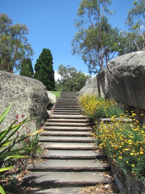 8473 - walking around Sydney(royal botanical gardens)