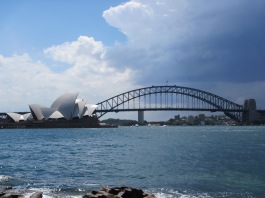 8479 - walking around Sydney(royal botanical gardens)