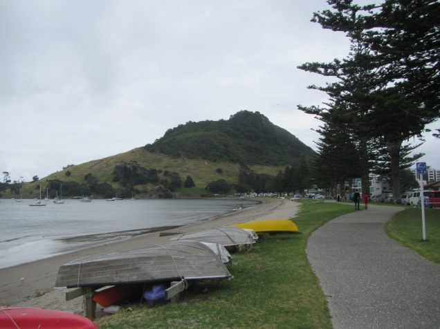 9348 - Walk around Tauranga well at this port of call