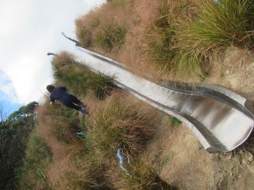 9540 - walking around Wellington
