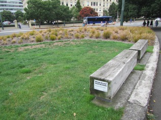 9548 - Walking around Wellington (Day 2 Botenic Gargarden)