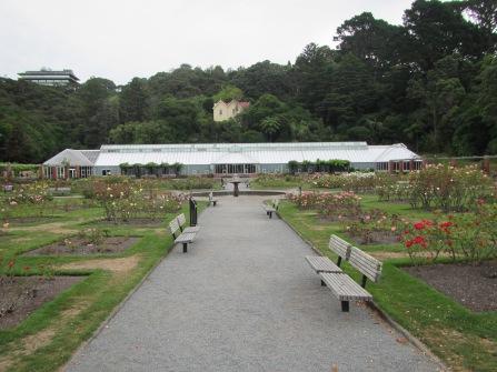 9555 - Walking around Wellington (Day 2 Botenic Gargarden)