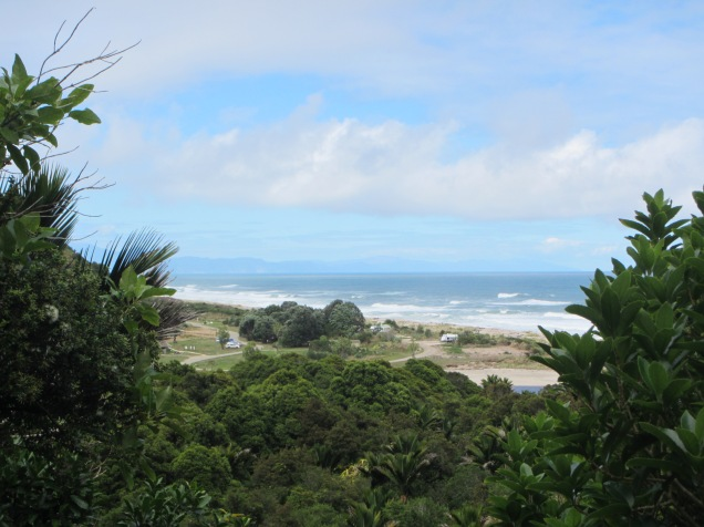 9625 - Day Hike on the Heaphy Track