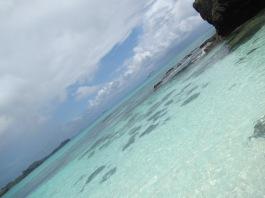 10464 - walking around and swimming at Yasawa-I-Rara Island