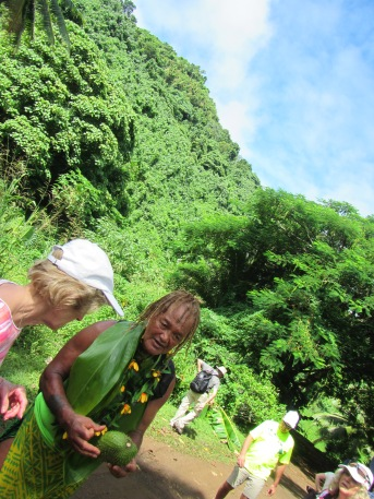 10615 - Rarotonga - Nature walk with PA