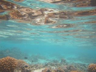 10675 - Aitutaki - Air mattress tour over the coral