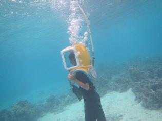 10812 - Bora Bora - underwater walk in the ocean