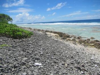11036 - Rangiroa - walking along the outside beech of the atoll(Plastic bottles)