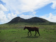 11377 - Easter Island - Day 1
