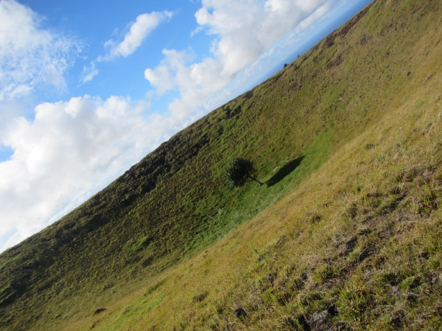 11420 - Easter Island - Day 2