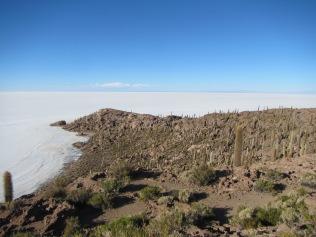 11920 - tour of the salt flats and the Island Incahuasi