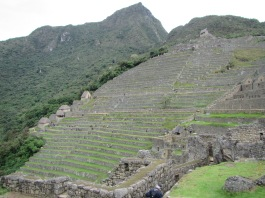 12430 - our visit to Machu Picchu from Aguas Calientes