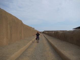 12703 - walking around the Ruinas de Chan-Chan