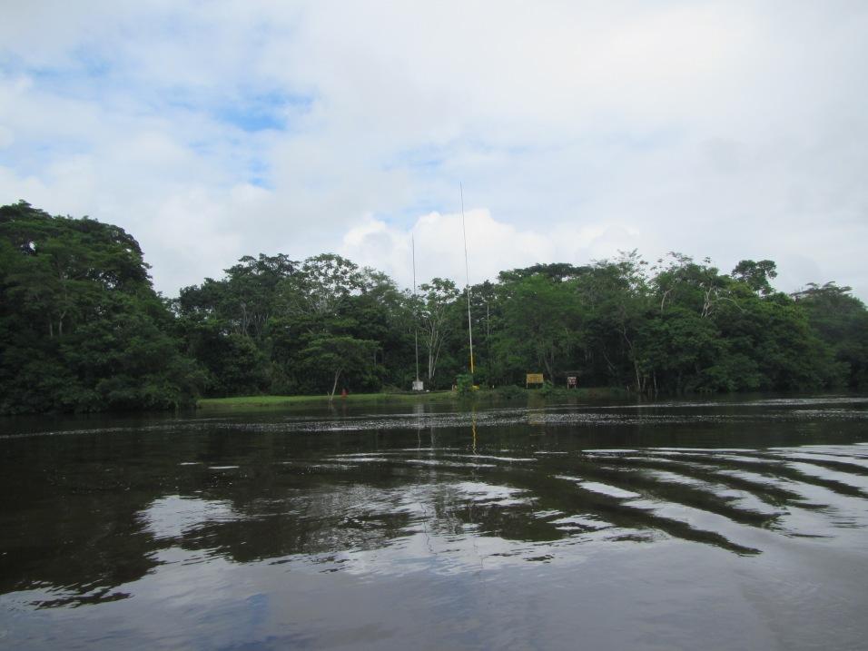13021 - Day 2 on our river cruise of the Amazon (Rio Napo)