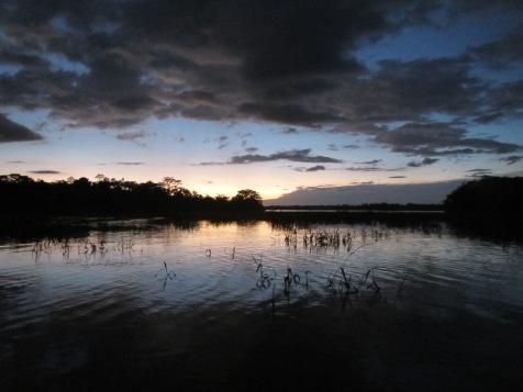 13280 - Day 4 on our river cruise of the Amazon (Rio Napo)