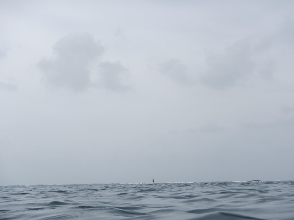 13559 - exploring the san blas Island day 3