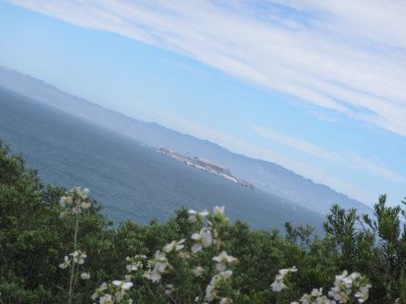 14158 -exploring San Jose and San Fransisco